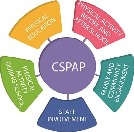cspap_diagram