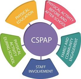 cspap_diagram